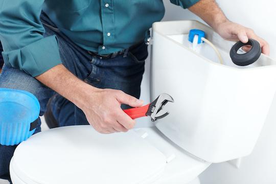 Plumber For Toilet